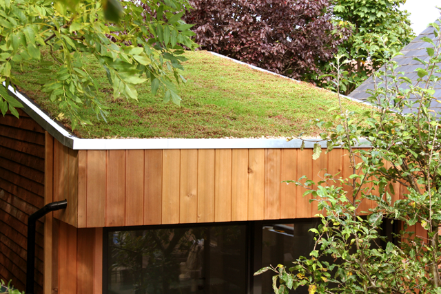 anewgarden-green-roof-london.png