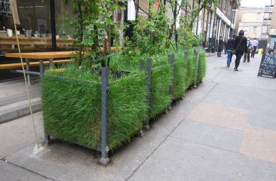 grass-planters.jpg