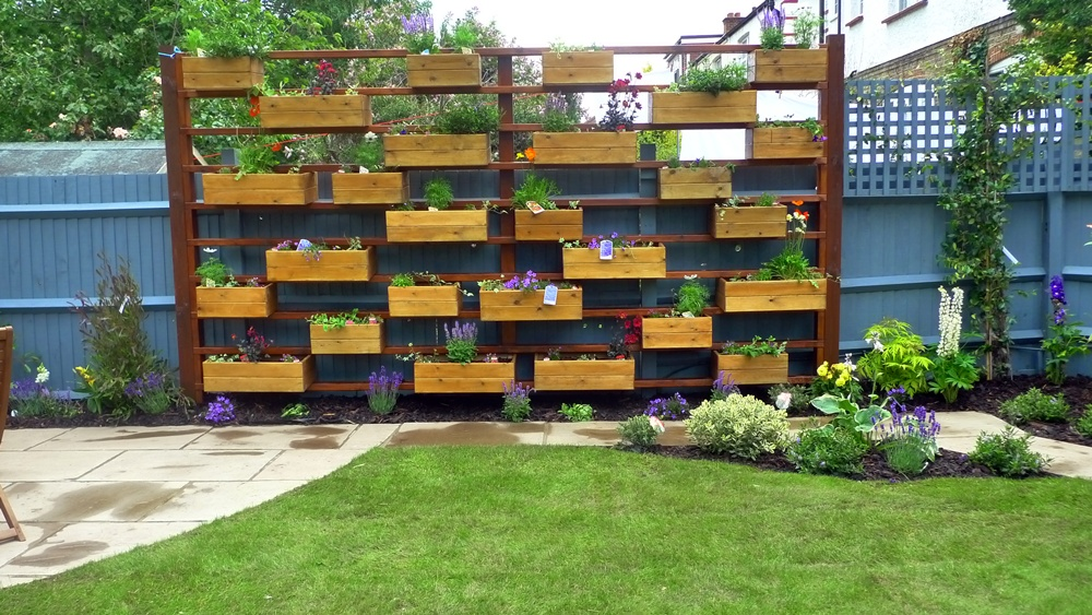 multi-level-window-box-privacy-garden.JPG