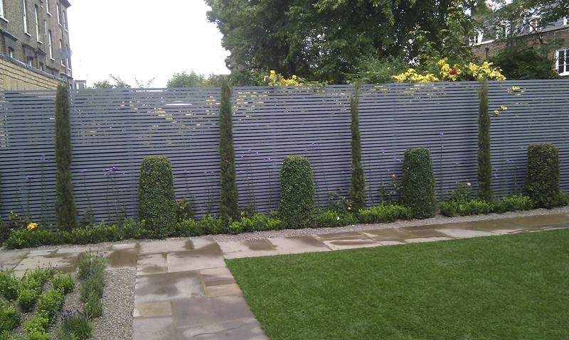 london-cypress-trees-privacy-screen.jpg