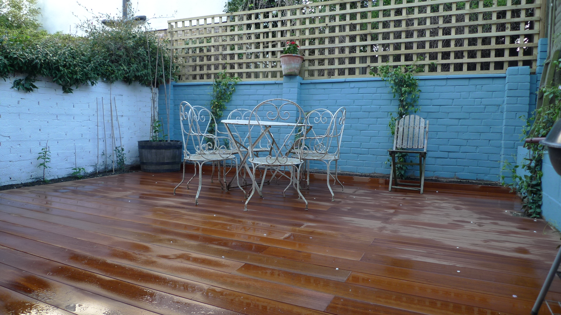 modern low maintenance hardwood decking court yard garden with painted walls trellis and climbing plants