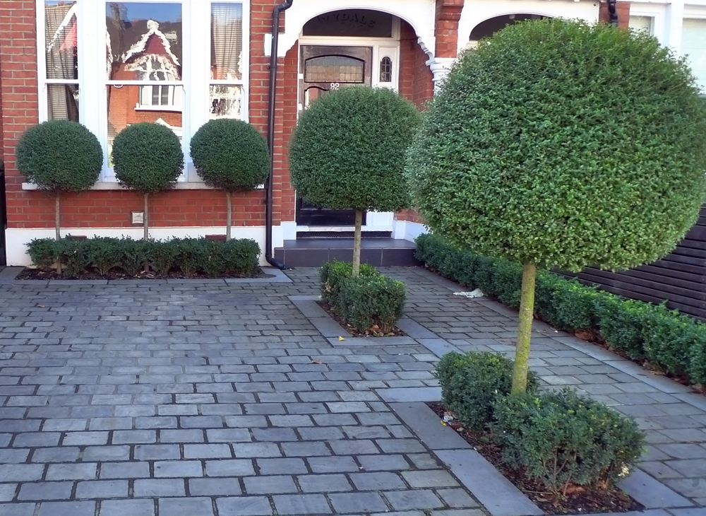 driveway block paving with topiary planting