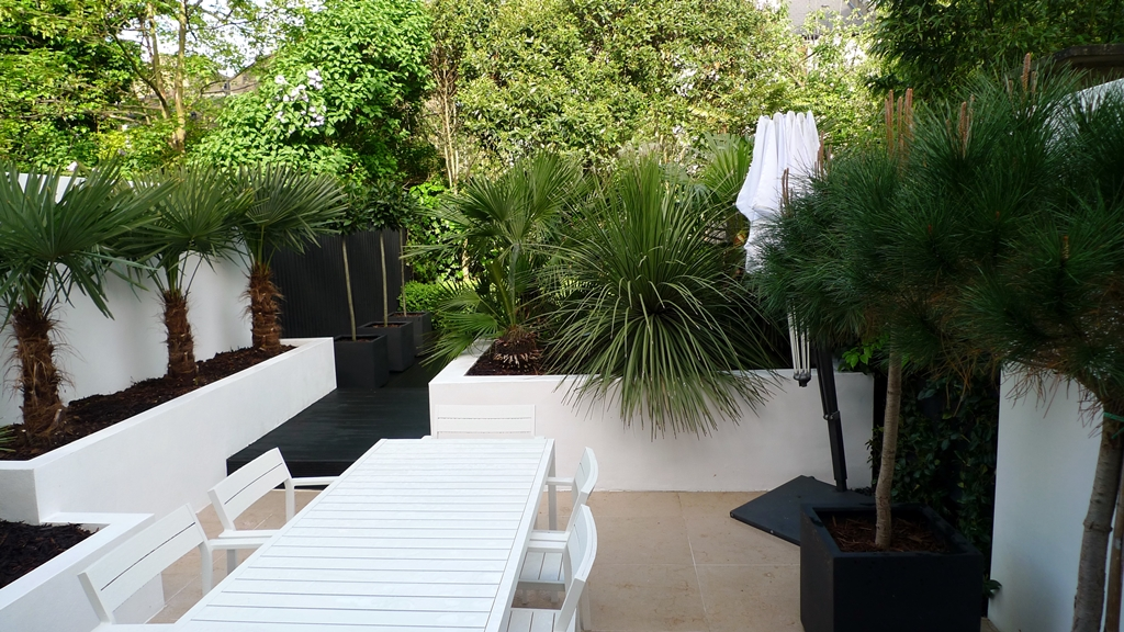 Modern Urban London Garden Design limestone paving white raised beds black decking architectural planting (14)
