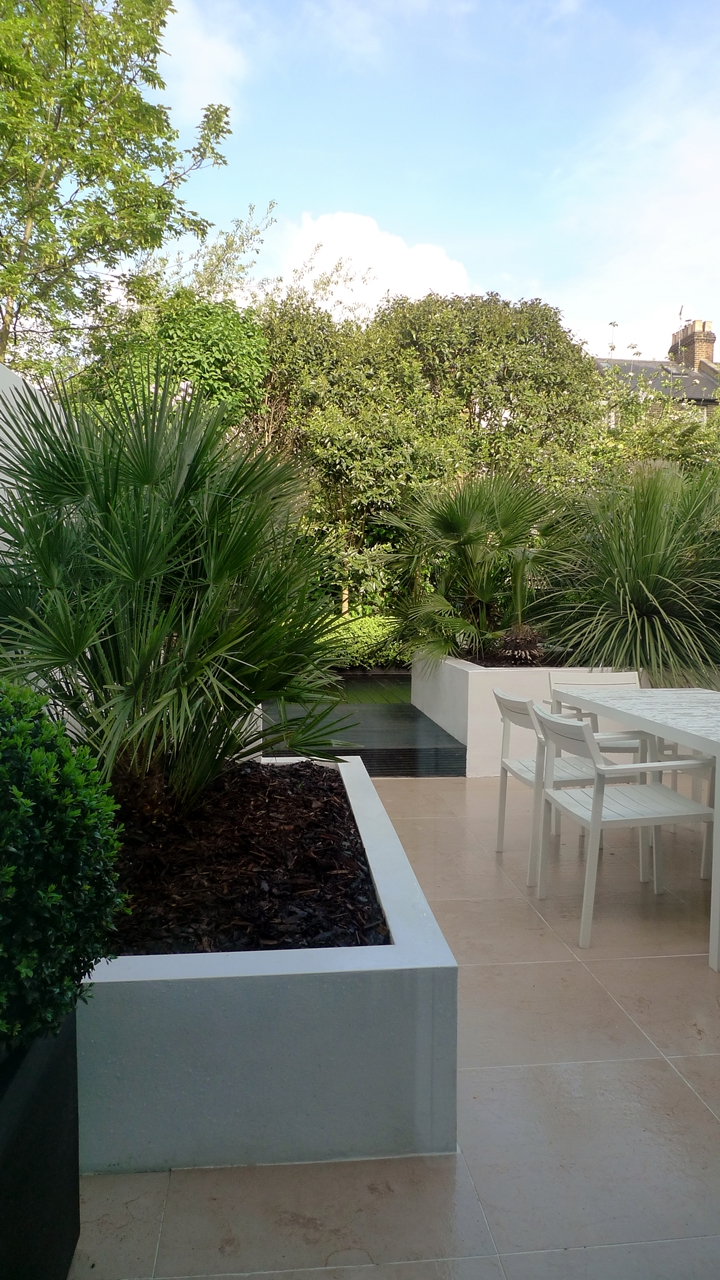 Modern Urban London Garden Design limestone paving white raised beds black decking architectural planting (2)