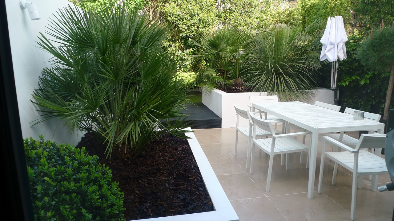 Modern Urban London Garden Design limestone paving white raised beds black decking architectural planting (3)