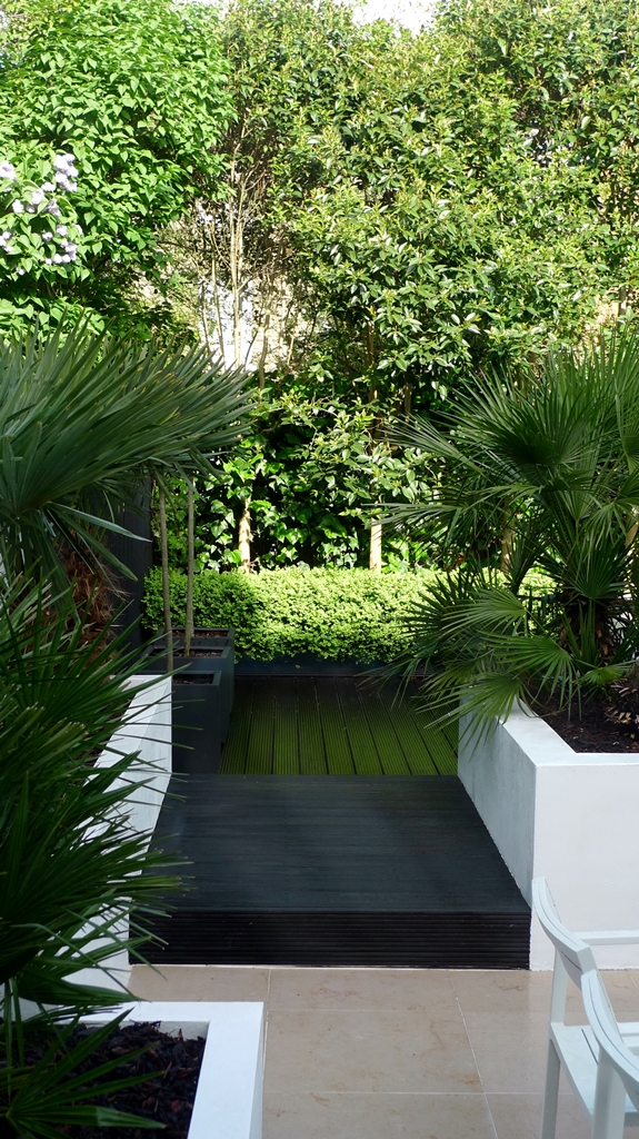 Modern Urban London Garden Design limestone paving white raised beds black decking architectural planting (6)