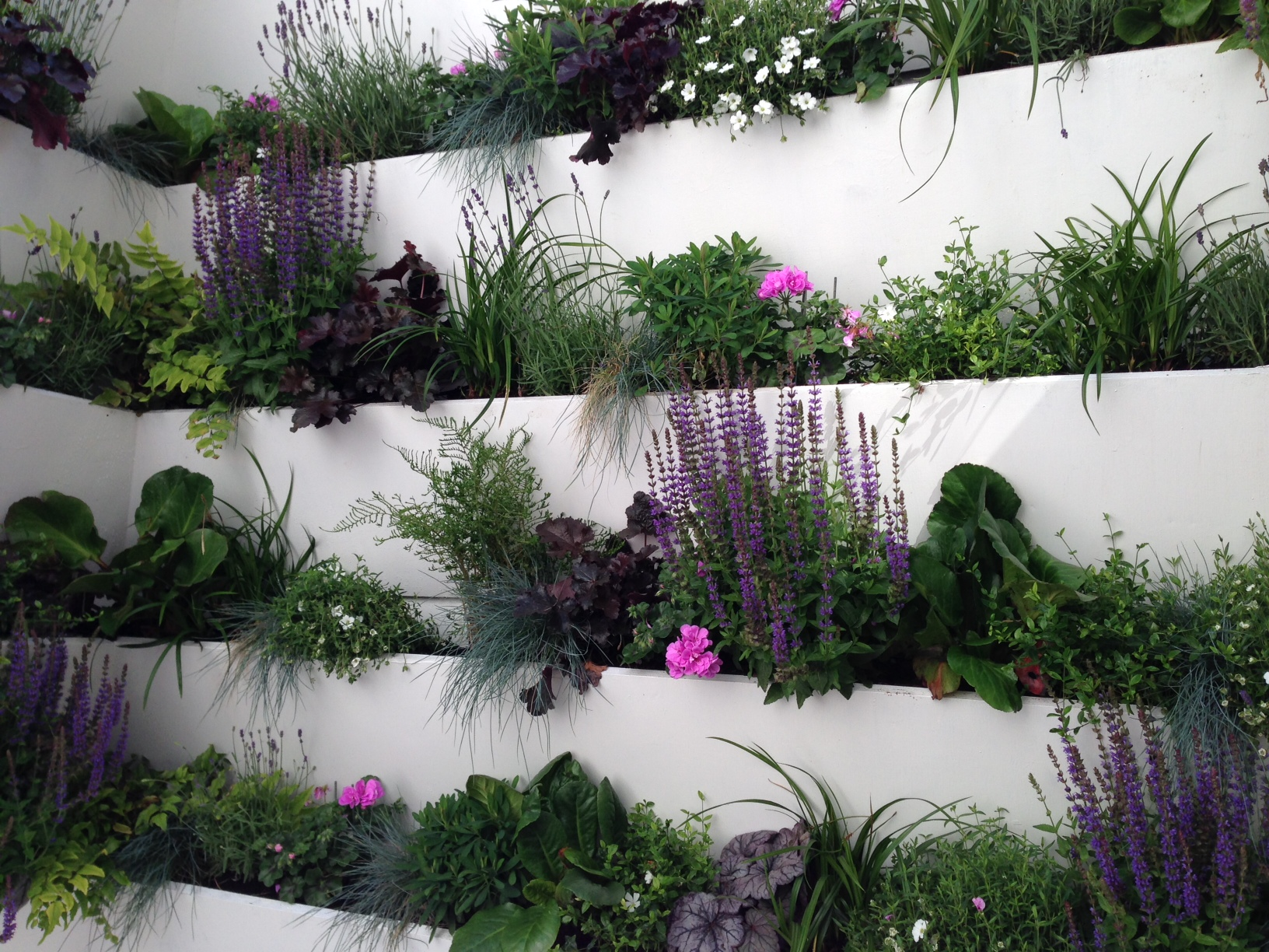 planting screen living wall london