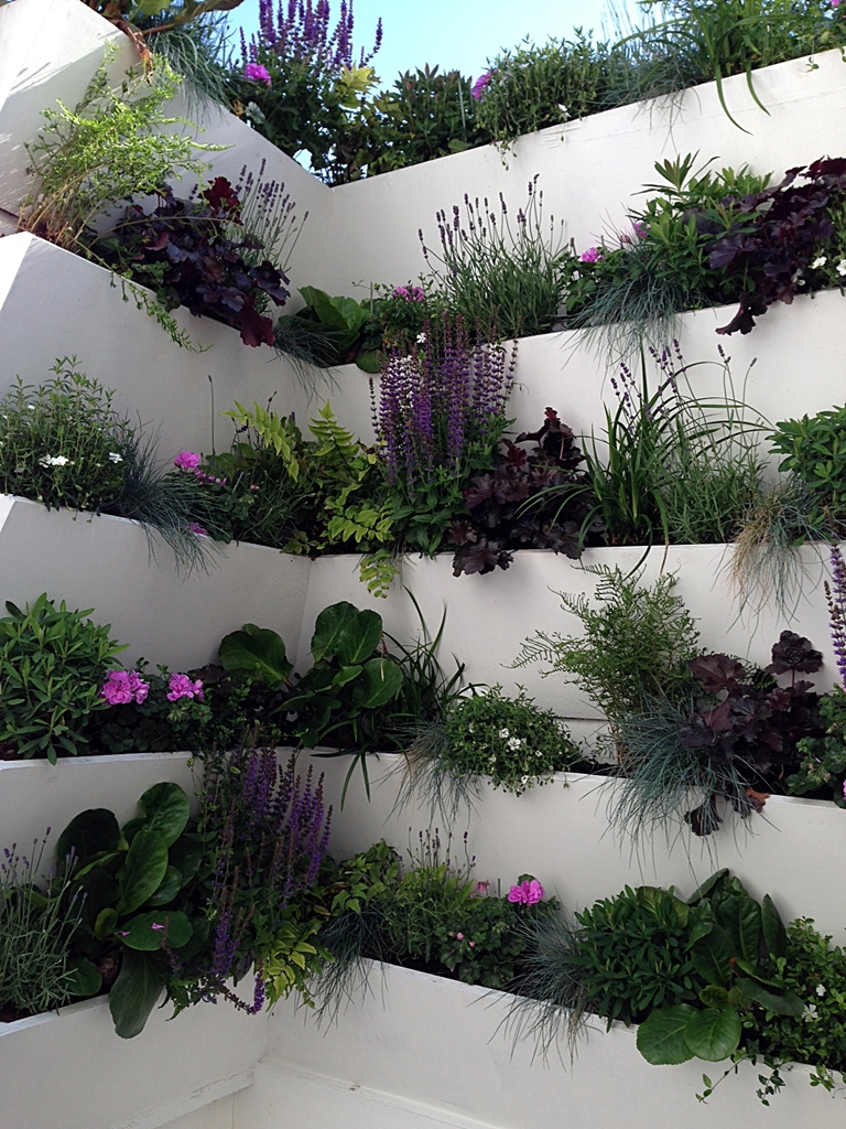 small gardening planting idea terraced living plant  wall