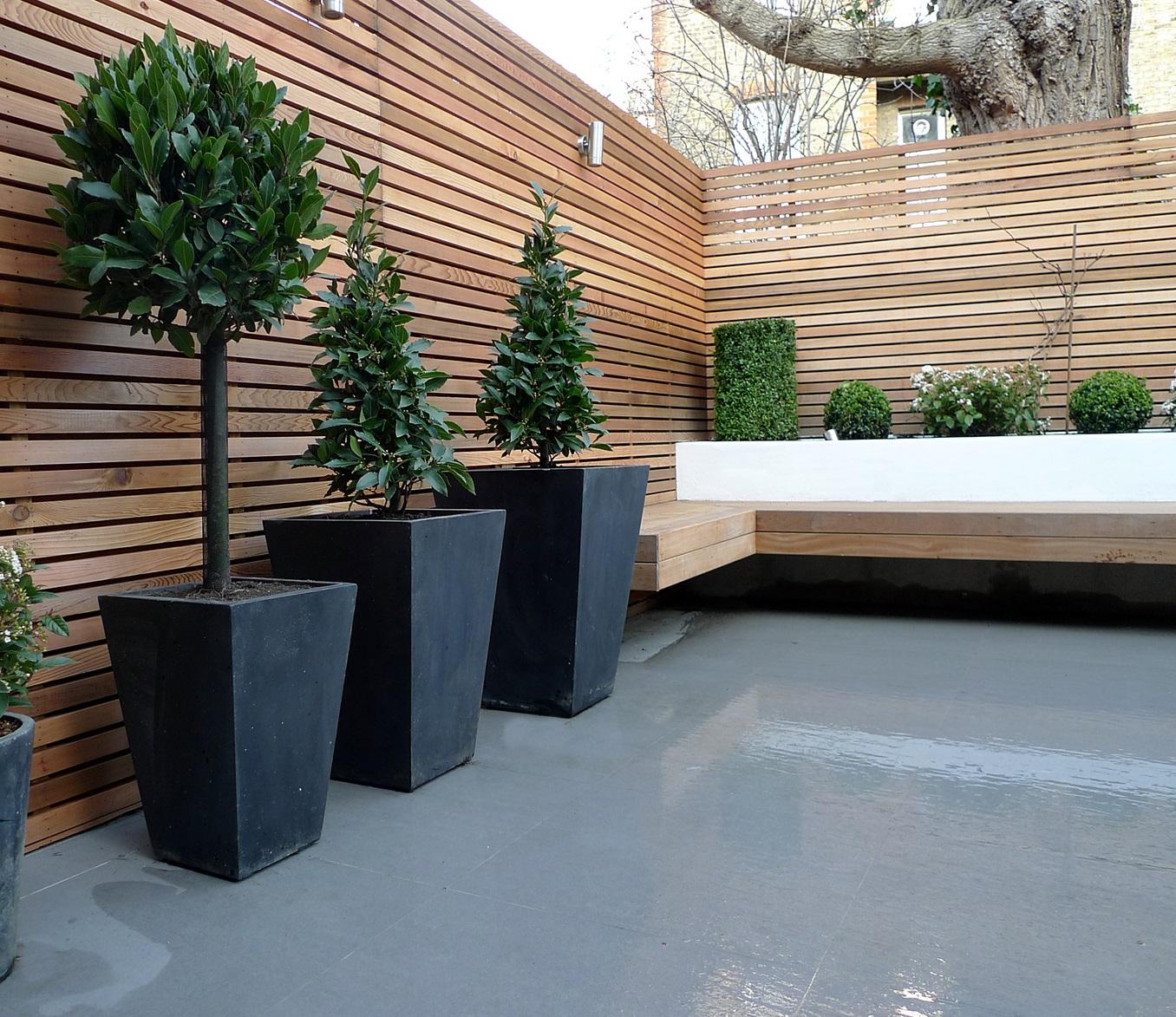 Garden design designer clapham balham battersea small low maintenance modern garden (17)