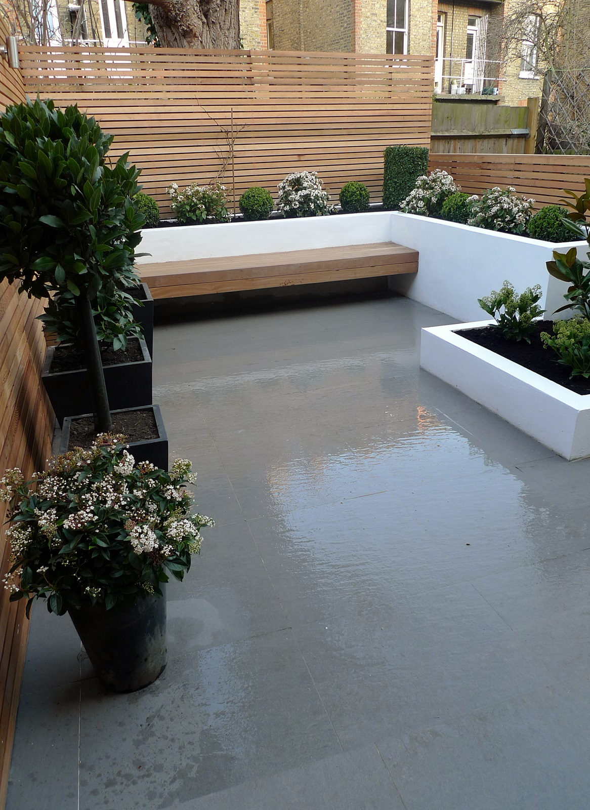 Garden design designer clapham balham battersea small low maintenance modern garden (19)
