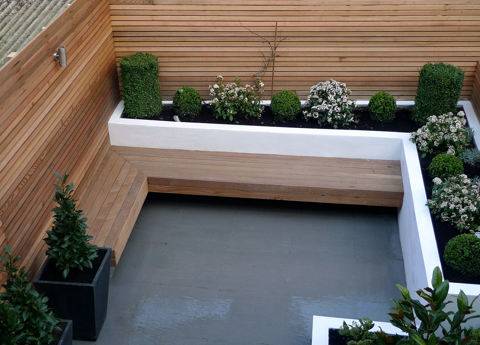 Garden design designer clapham balham battersea small low maintenance modern garden (2)