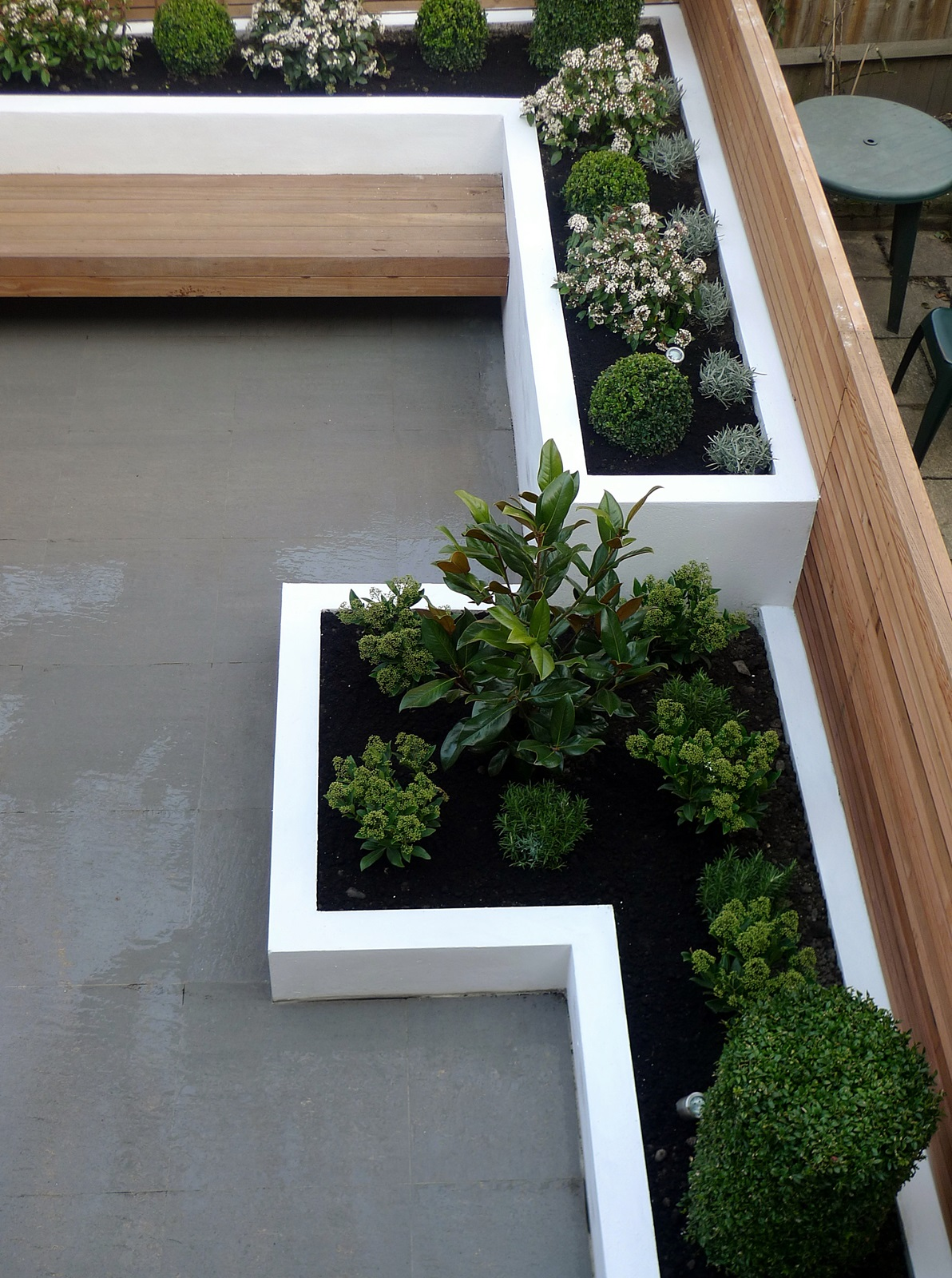 Garden design designer clapham balham battersea small for Modern low maintenance plants