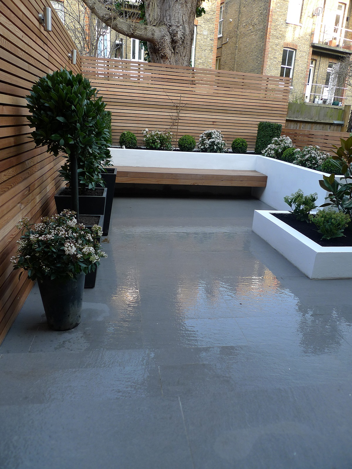 Garden design designer clapham balham battersea small low maintenance modern garden (6)