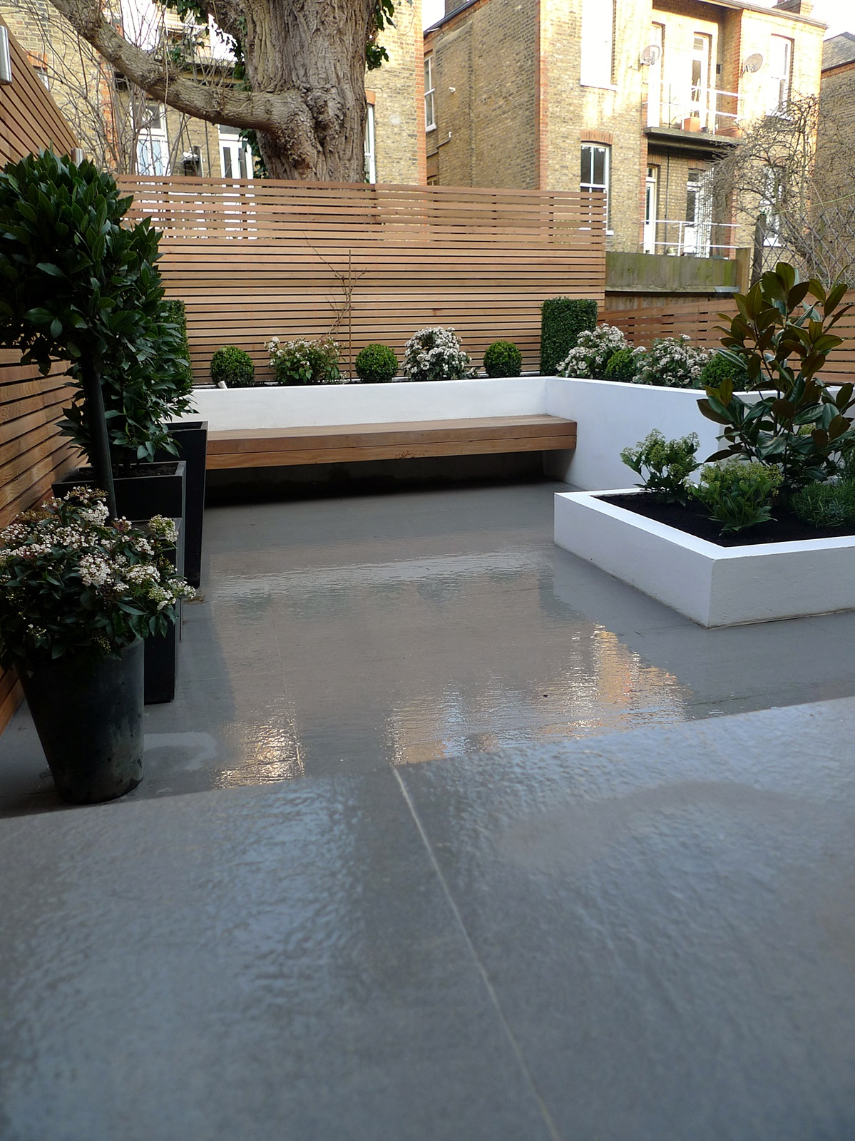 Garden design designer clapham balham battersea small low maintenance modern garden (7)