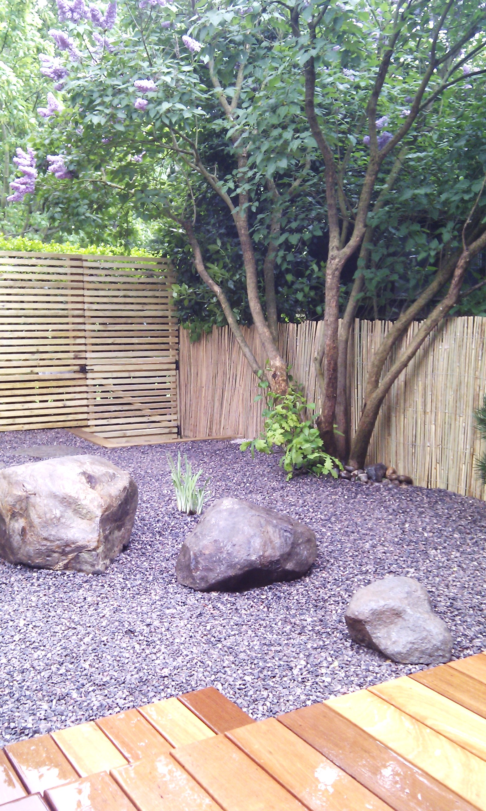 hardwood decking minimalist limestone chippings privacy screen south east london (28)