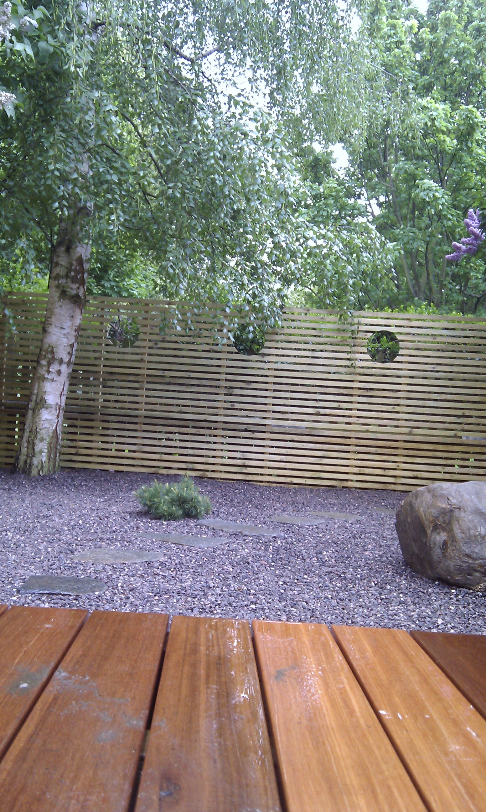 hardwood decking minimalist limestone chippings privacy screen south east london (29)