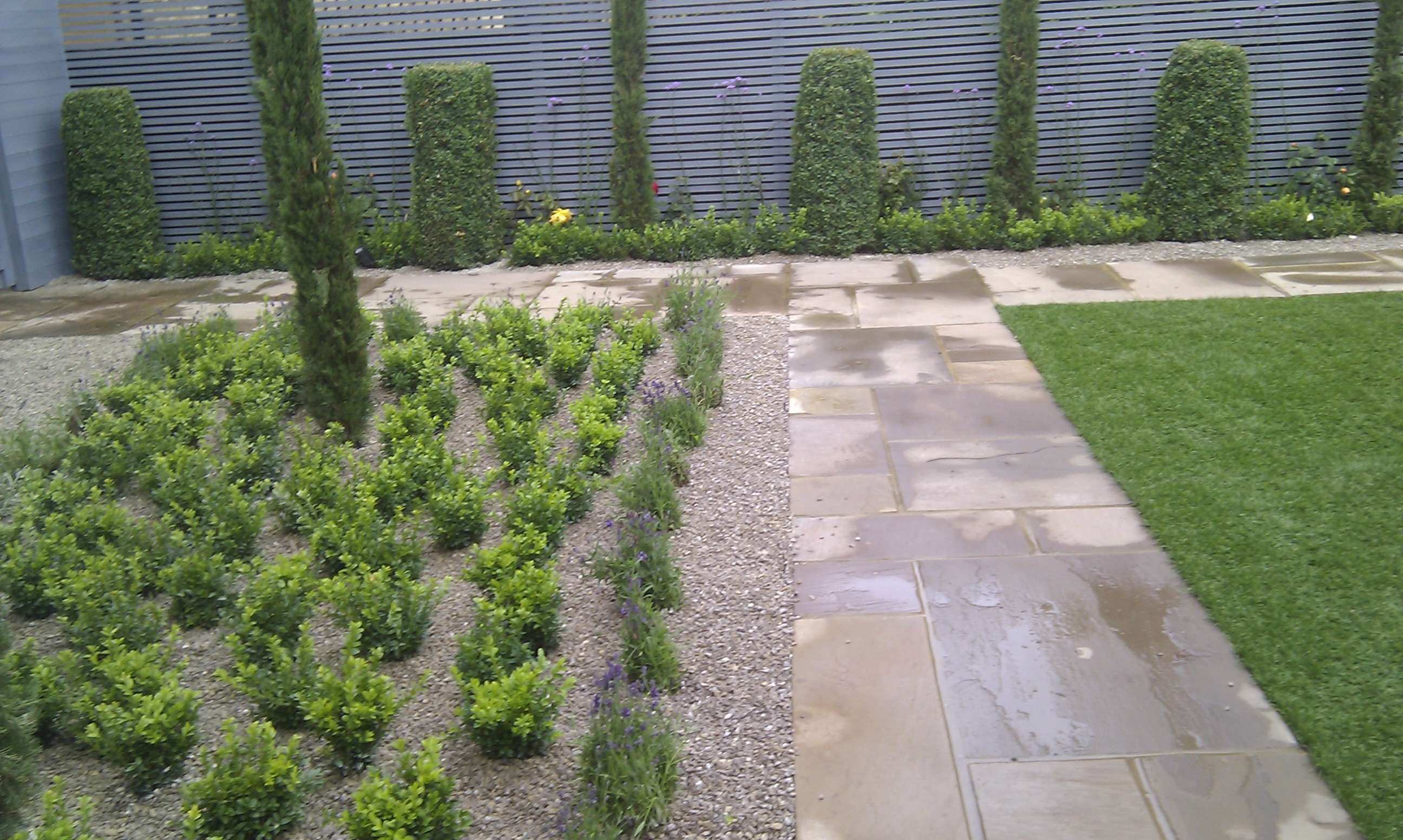 modern planting easy grass grey trellis screen sandstone paving designer design garden hampstead belsize park london (7)