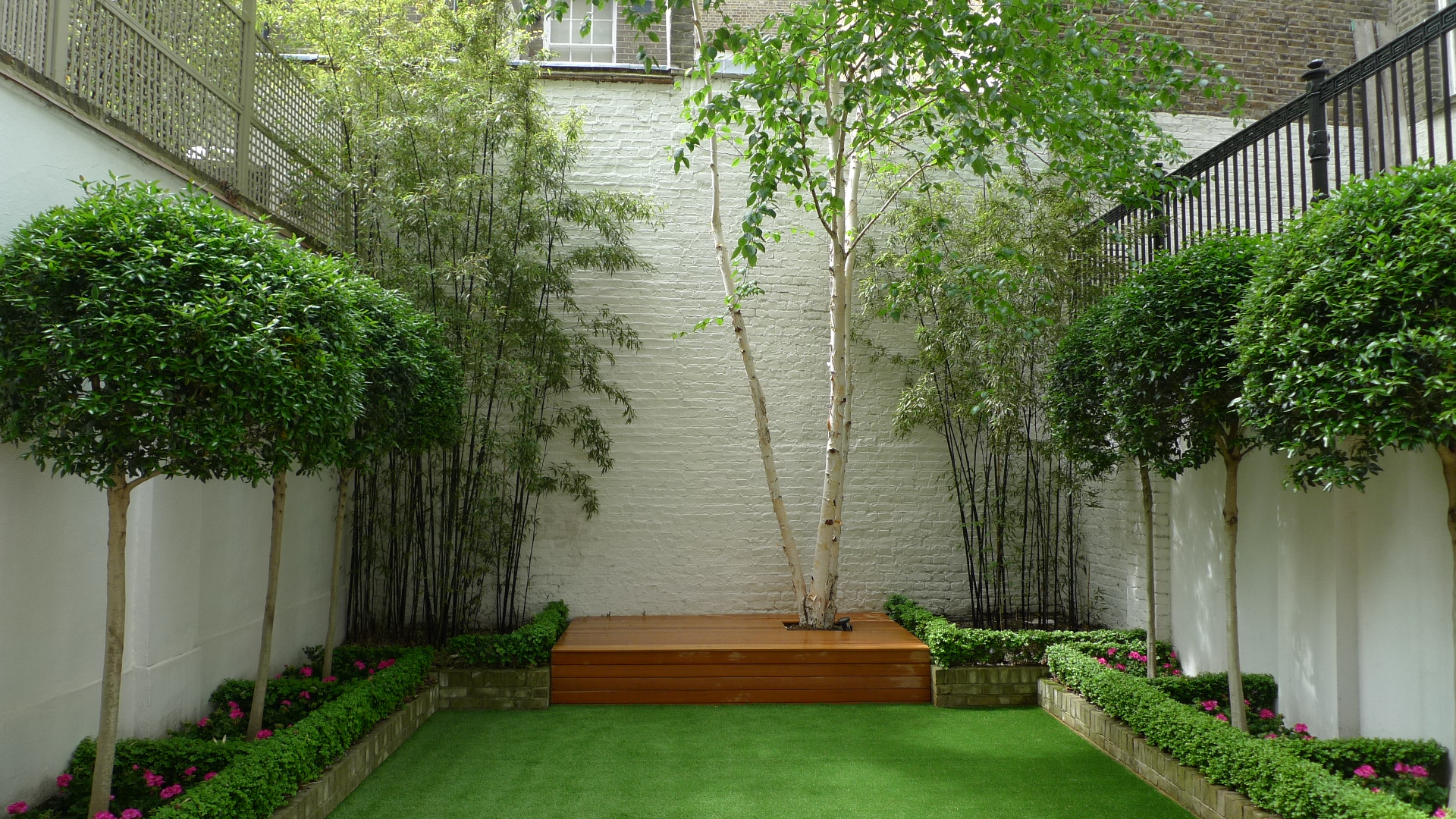 anewgarden garden designers builders chelsea clapham fulham battersea london