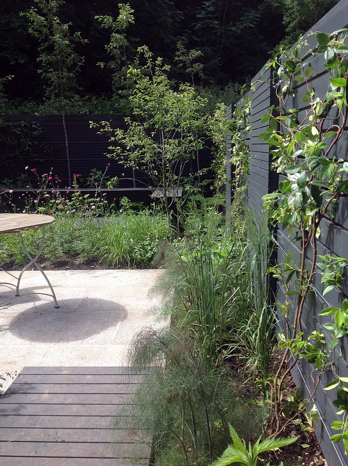 London small garden design peckham dulwich clapham battersea designer london