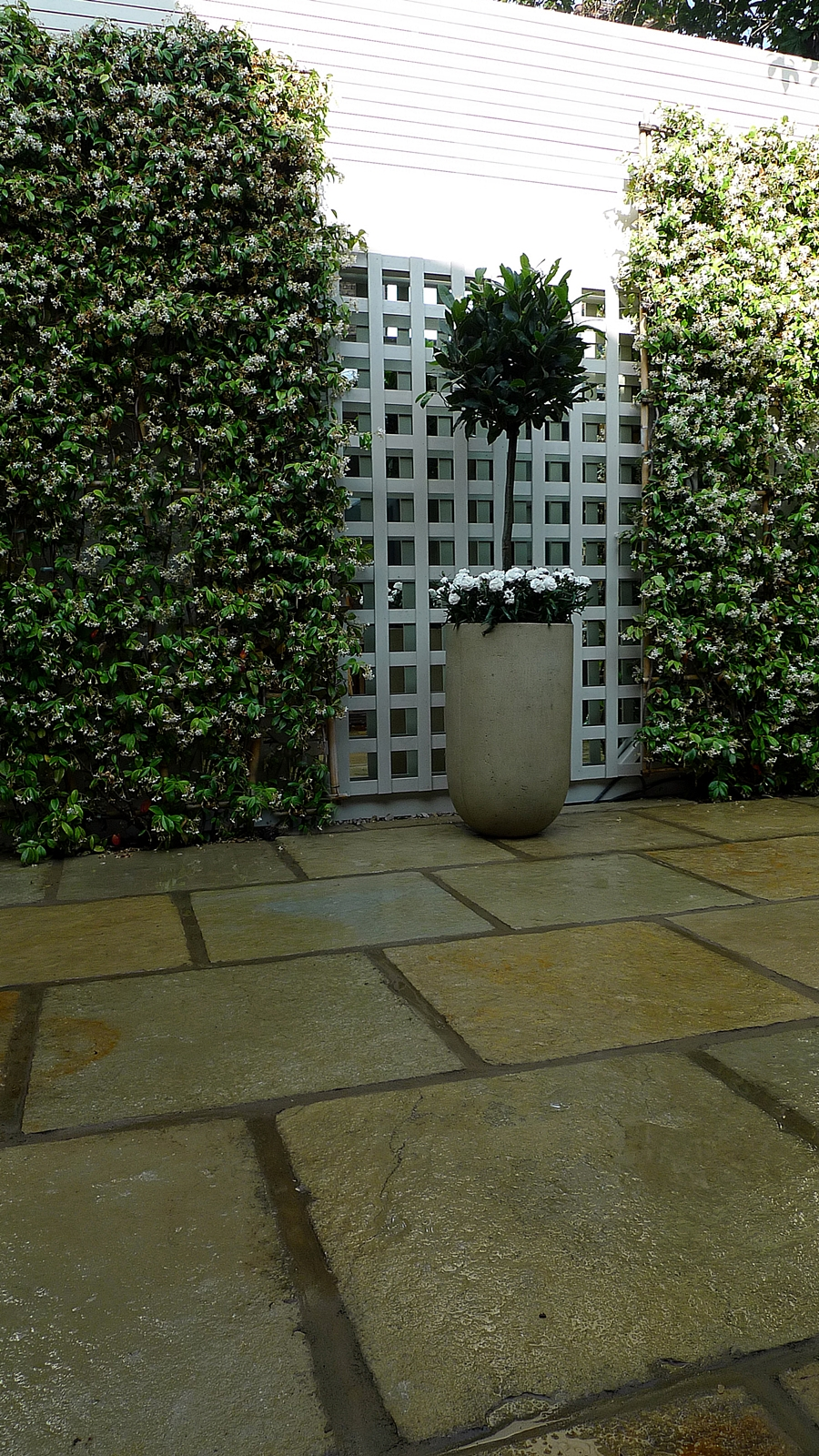 modern courtyard garden design limestone paving painted trellis and screen topiary and planters wandsworth battersea clapham balham fulham chelsea london