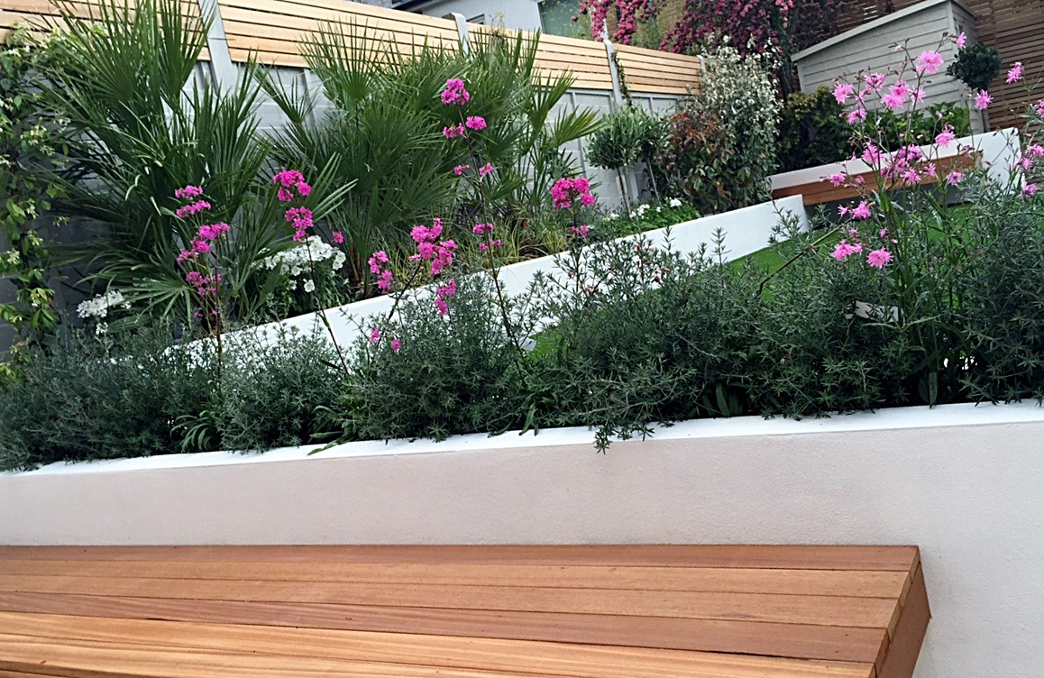 Raised beds garden company planting garden design London Wandsworth Clapham