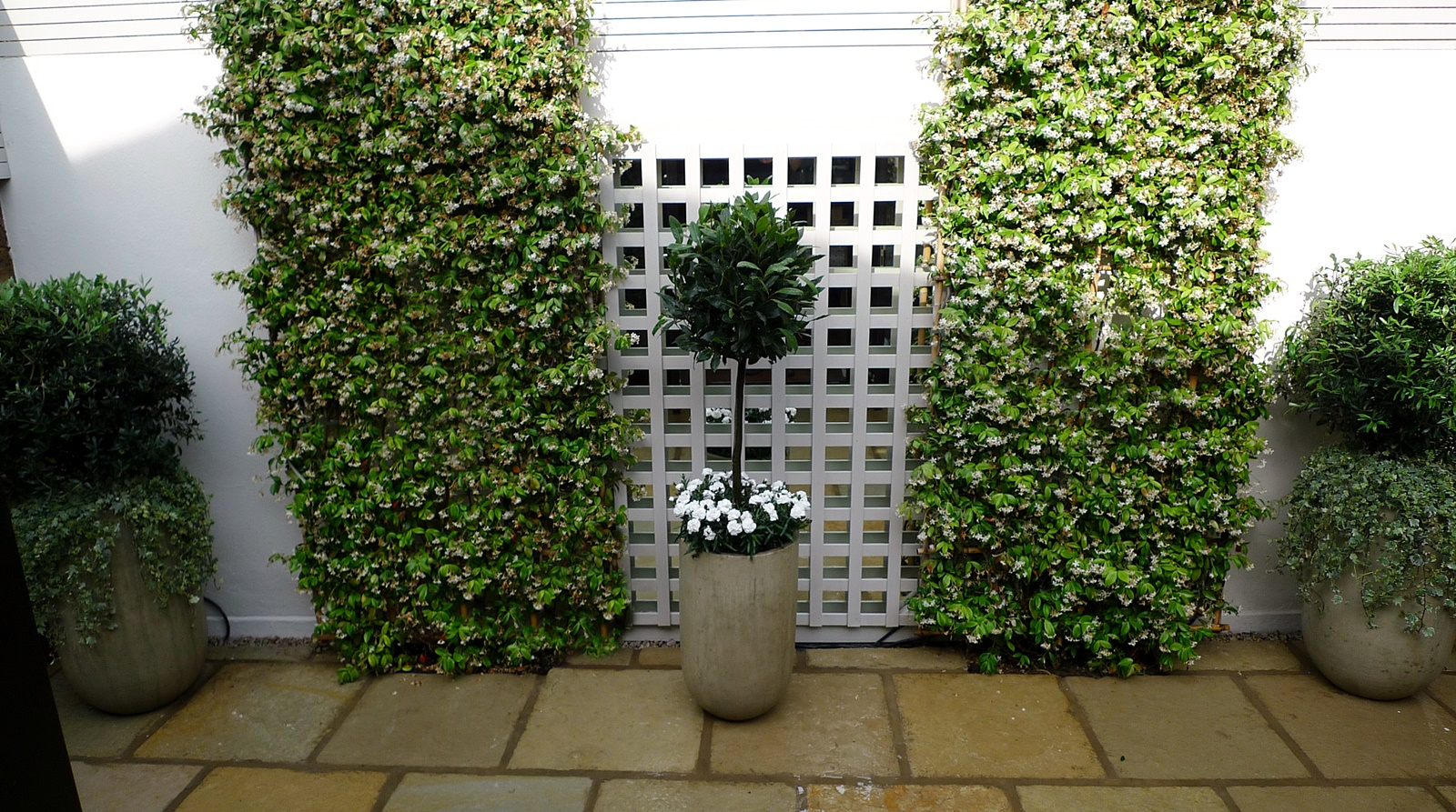 Courtyard minimalist contemporary garden design and designer kensington london