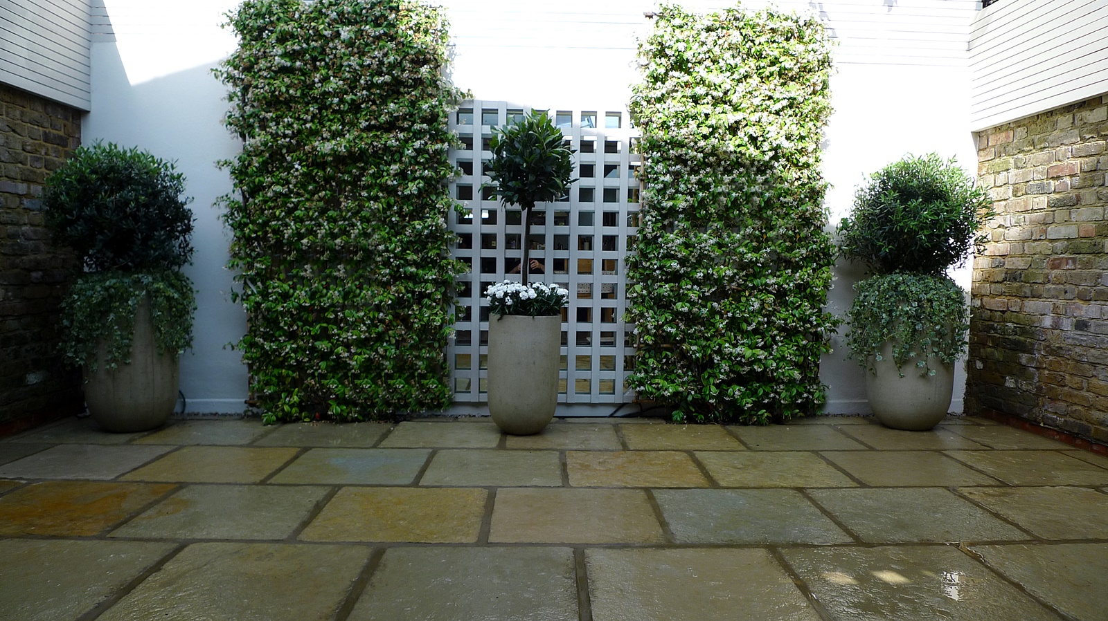 Courtyard minimalist contemporary garden design and designer knightsbridge london
