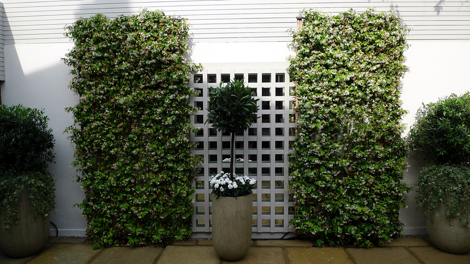 Courtyard minimalist contemporary garden design and designer mayfairlondon