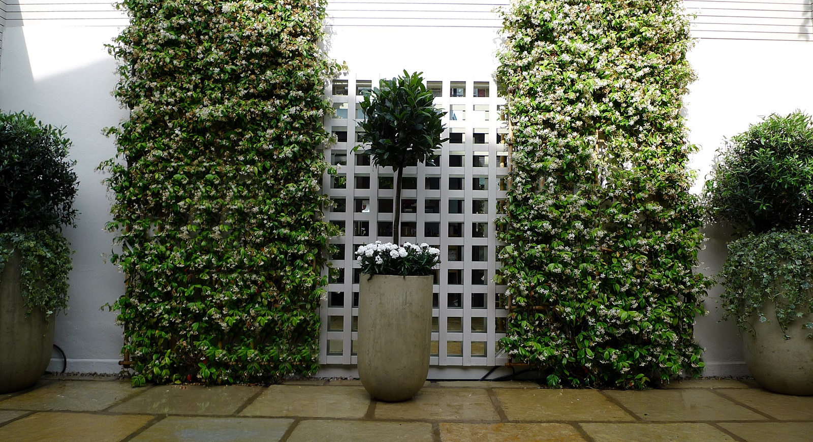 Courtyard minimalist contemporary garden design and designer putney sheen london