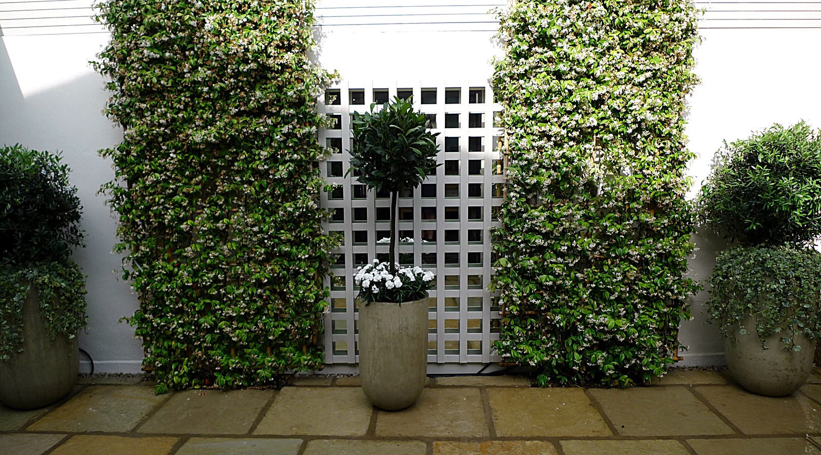 Courtyard minimalist contemporary garden design and designer w1 w2 london