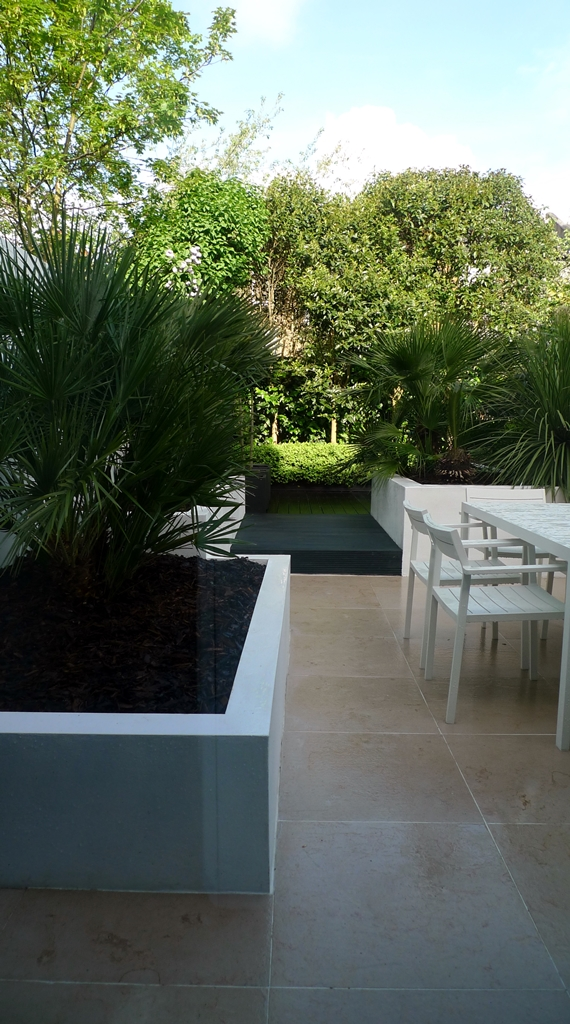 Floating black bench topiary planting limestone tile buxux low maintenance London Fulham Chelsea Kensington