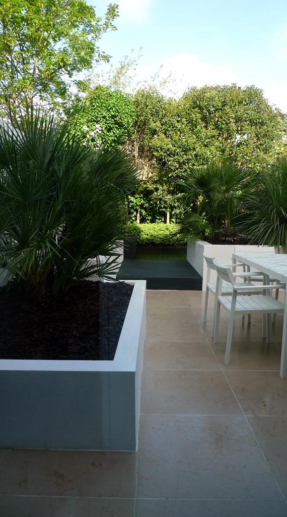 Floating black bench topiary planting limestone tile buxux low maintenance London Fulham Chelsea Kensington