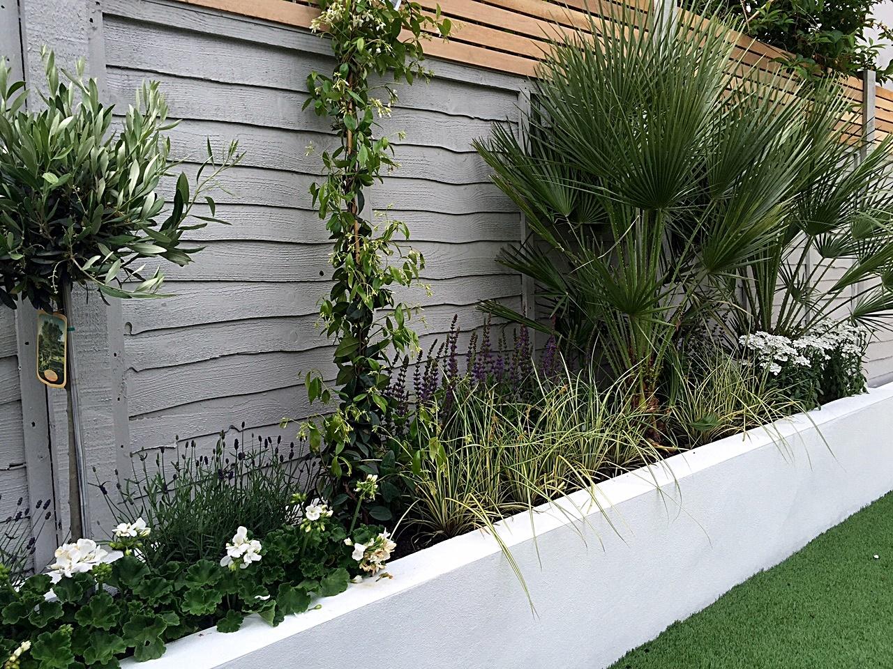 Small Garden Fencing: London Garden Blog