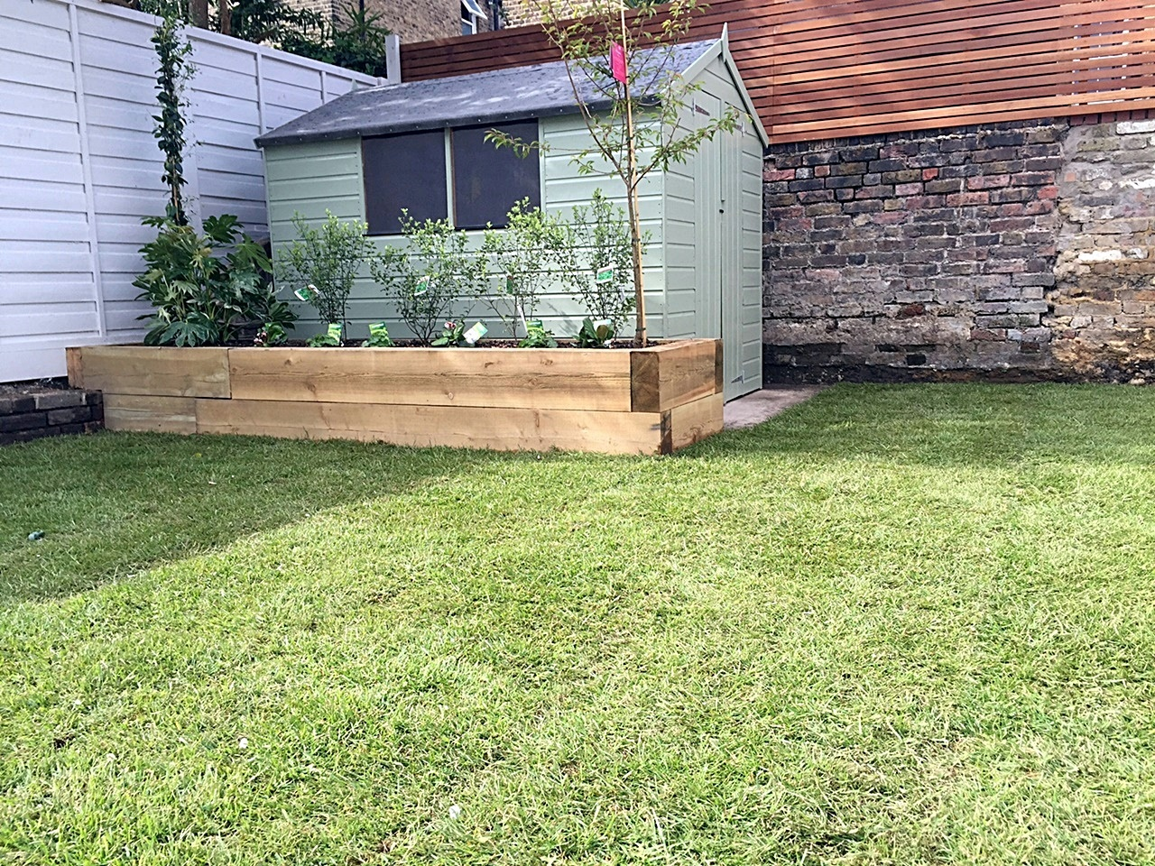 Low maintenance shed planting real grass hardwood screen privacy London Battersea Wandsworth Earsfield