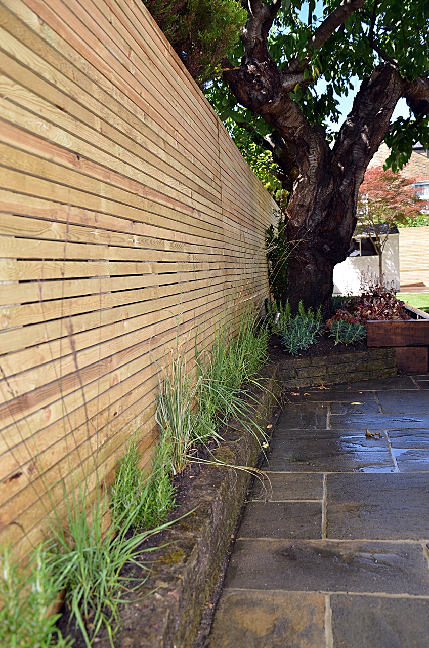 Low maintenance fencing trellis path tiles paving planting London Balham Clapham Battersea Wandsworth