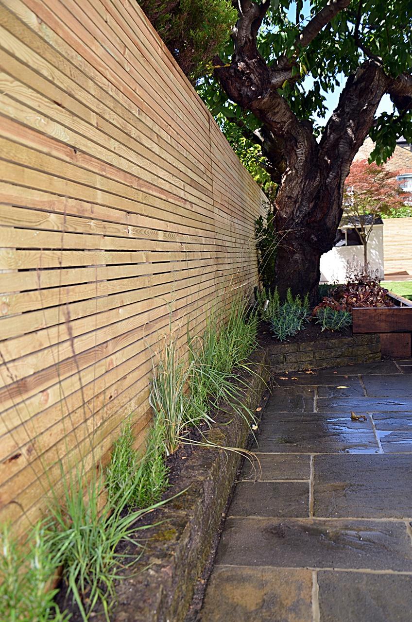 Low maintenance fencing trellis path tiles paving planting London Balham Clapham Battersea Wandsworth