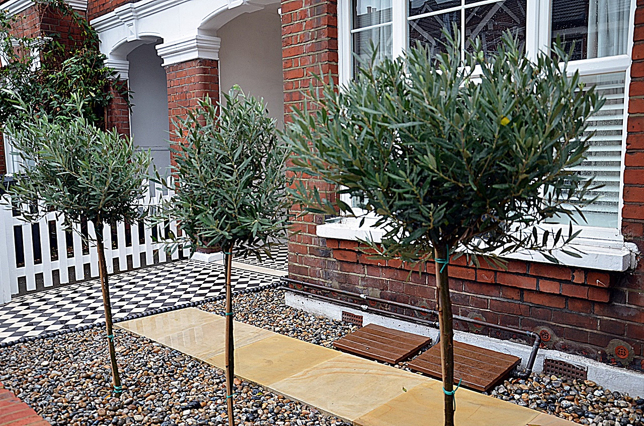 front garden design london fulham chelsea kensington - Front Garden Ideas London