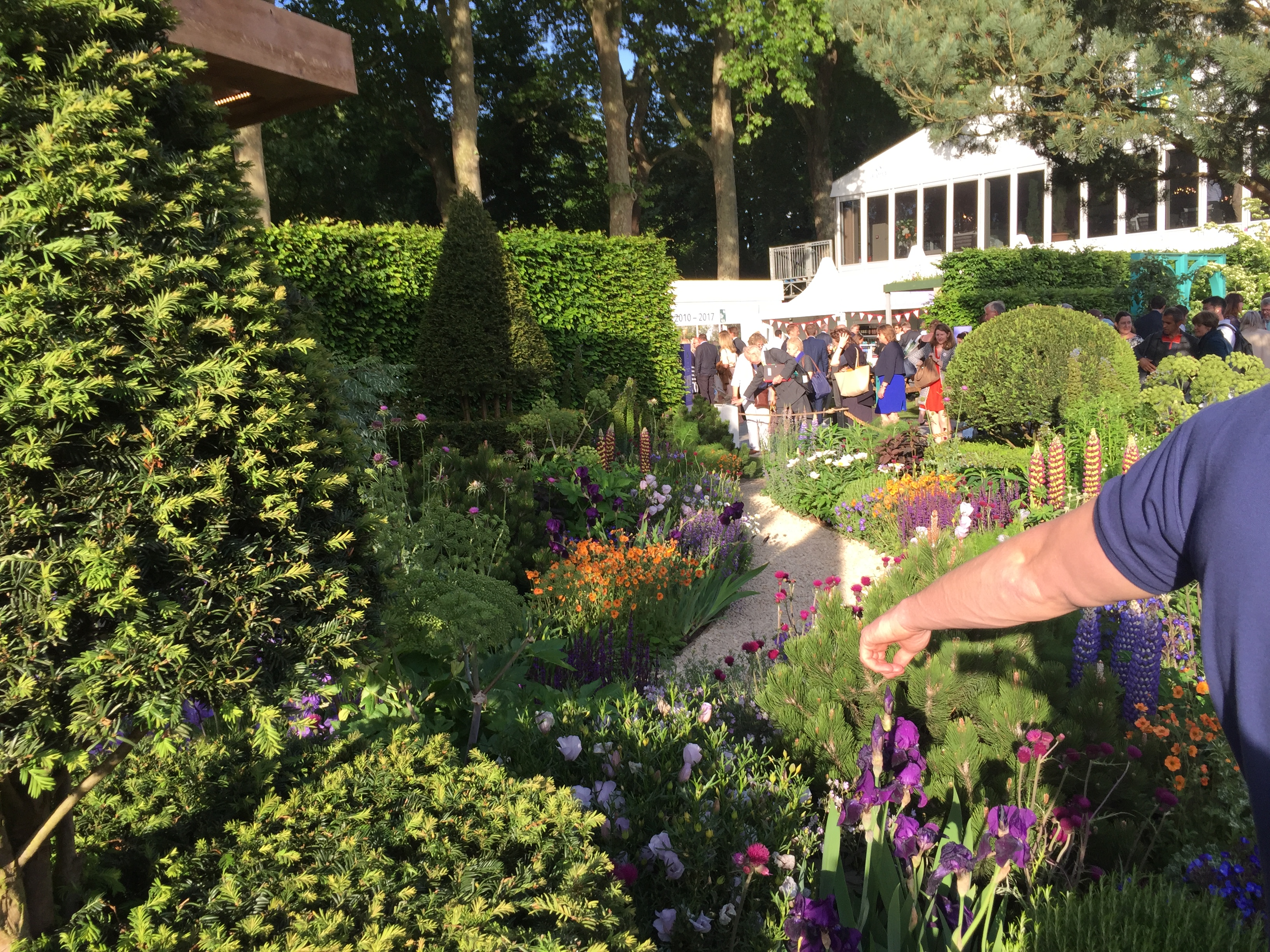 Chelsea flower show london 2017 london garden blog - Chelsea garden show ...