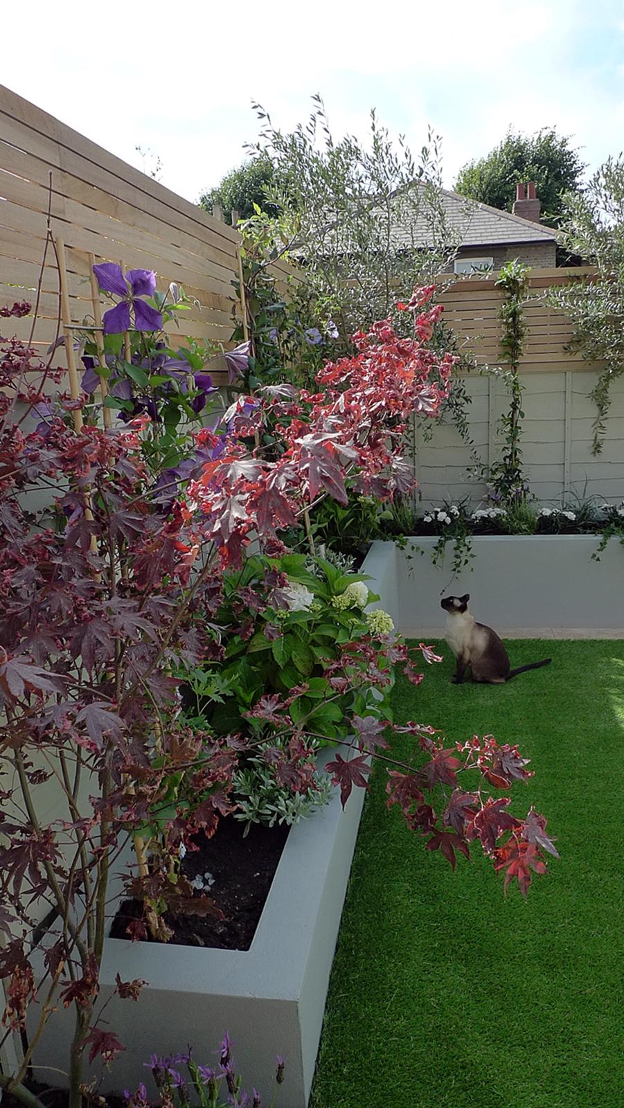 Small Garden Design London Garden Blog